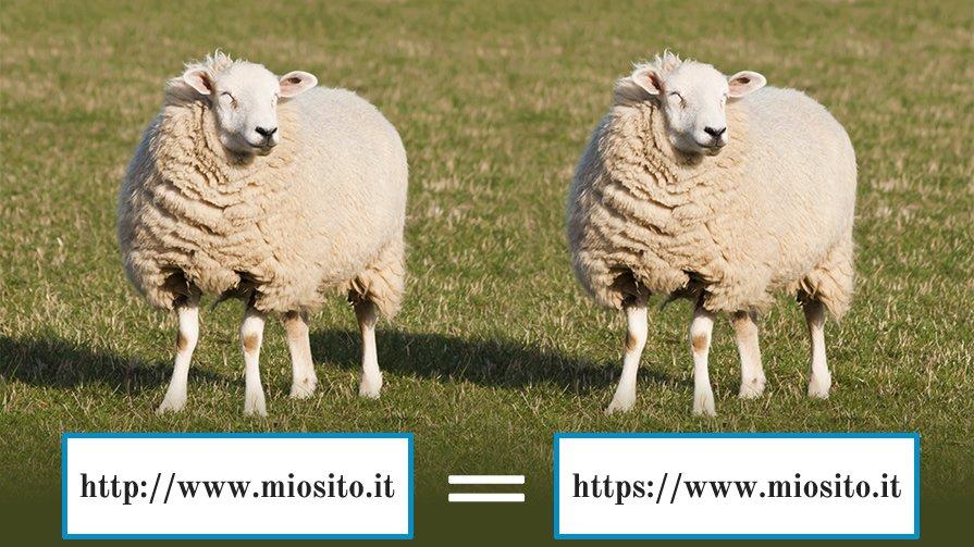 sito-clone-duplicato-http-https